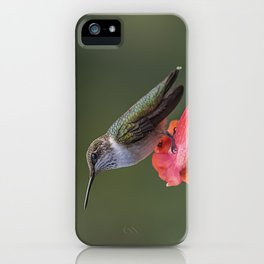 Humming bird resting on a flower iPhone Case