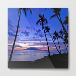 BEACH AND PALM TREES Metal Print