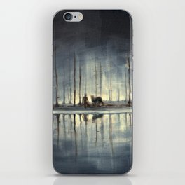 Water's Edge iPhone Skin