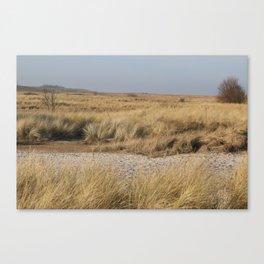 Wild Landscapes at the coast 4 Canvas Print