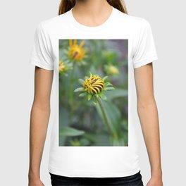 Rudbeckia hirta (vertical) T-shirt