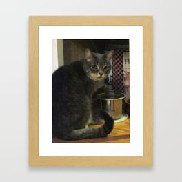 Lucy At The Water Bowl Framed Art Print
