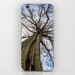 Titan Tree iPhone Skin