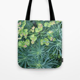"Euphorbia Cyparissias ""Fens Ruby"" Tote Bag"