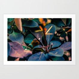 Close to nature Art Print