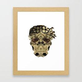 Oriental Skull Framed Art Print