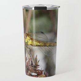 Brown Dragonfly On Husks With Garden Background Travel Mug