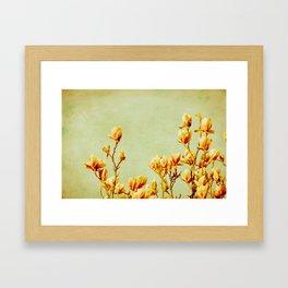wednesday's magnolias Framed Art Print