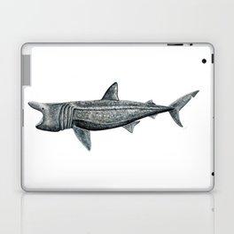 Basking shark (Cetorhinus maximus) Laptop & iPad Skin