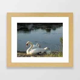 Parents and baby relaxing on the shore Framed Art Print