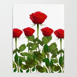 ORIGINAL GARDEN DESIGN OF RED ROSES ON WHITE Poster