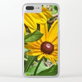 Black-eyed Susans and a Busy Bee Clear iPhone Case