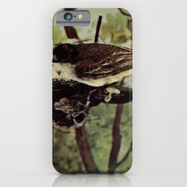 Neltje Blanchan - Bird Neighbours (1903) - Kingbird iPhone Case