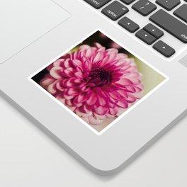 Pink Goodness Sticker