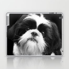 Shih Tzu Dog Laptop & iPad Skin