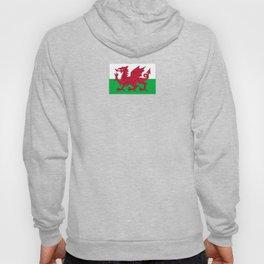 Flag of Wales,uk,great britain,dragon,cymru, welsh,celtic,cymry,cardiff,new port Hoody