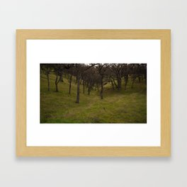 A path Framed Art Print