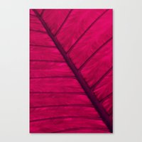 leaf Canvas Prints featuring leaf by Claudia Drossert