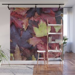 Autumn Leaves - Garden Photography by Fluid Nature Wall Mural