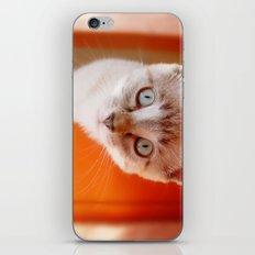 Lili  iPhone & iPod Skin