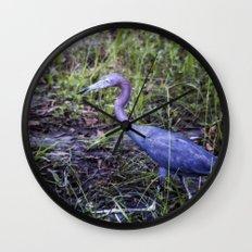 Little Blue Heron Strut Wall Clock