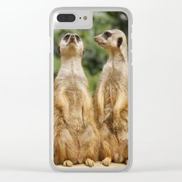 Meerkat20151204 Clear iPhone Case