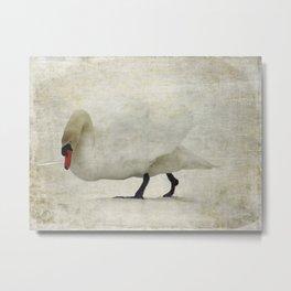 A Swan's Awakening Metal Print