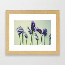 Pretty Blue Flowers Framed Art Print