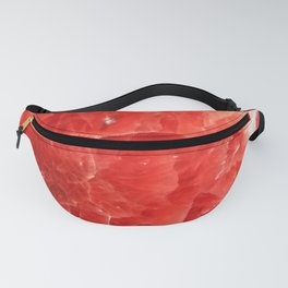 Red Crystal Agate Abstract 2 Fanny Pack
