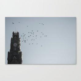 Bird time sky Canvas Print