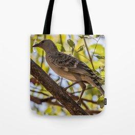 Bowerbird Tote Bag