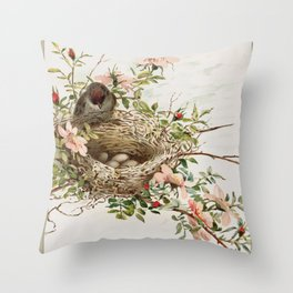 Vintage Bird with Eggs in Nest Throw Pillow
