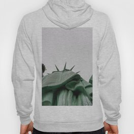 A Lady in green - NYC Hoody