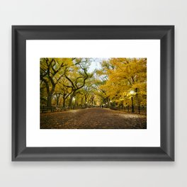 Central Park New York City Framed Art Print