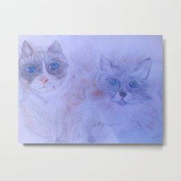 My Cats in Heaven Metal Print