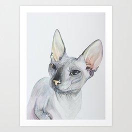 Cat Portrait #3 - Sphynx (2016) Art Print
