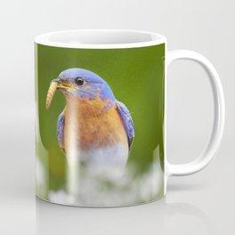 Bluebird with Worm Coffee Mug