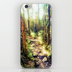 Zealand Forest iPhone & iPod Skin