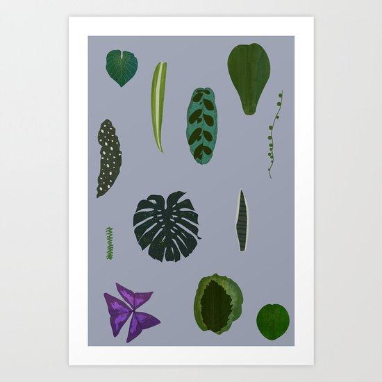 A non-scientific botanical investigation of the indoor plant. Art Print