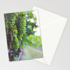Drink More Wine in Napa Stationery Cards