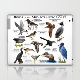 Birds of the Mid-Atlantic Coast Laptop & iPad Skin