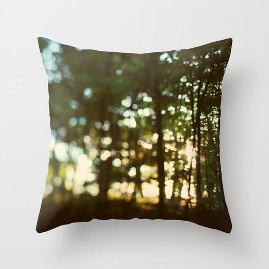 In Secret Throw Pillow