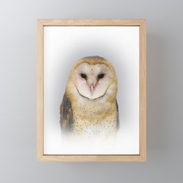 Portrait of a Barn Owl Framed Mini Art Print