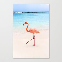 Walk On: Pink Flamingo Canvas Print