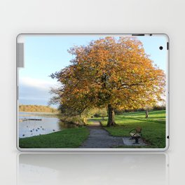 Branching Out Laptop & iPad Skin