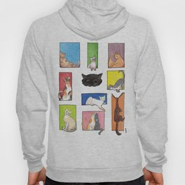 Square Cats Hoody