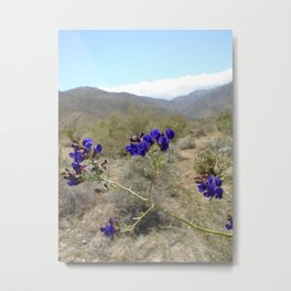 Indigo bush Metal Print