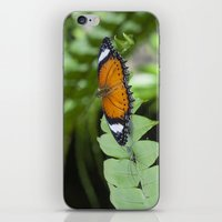 beauty and the beast iPhone & iPod Skins featuring Beauty and the Beast by Deborah Janke