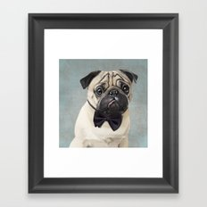 Mr Pug Framed Art Print