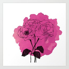 spray roses Art Print